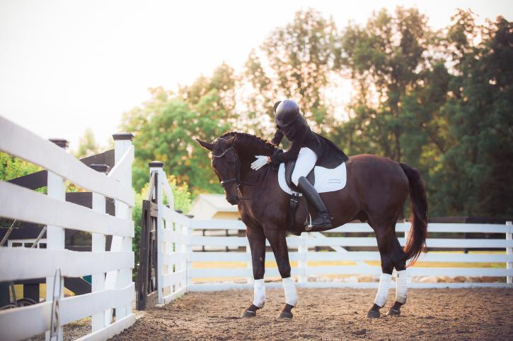 Stephen riding Caroline's McConnell's Grand Prix horse Alfonso (Photo: Amanda Diefenbach Photography)