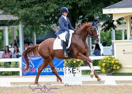 Judy Kelly and Quintess, Markel/USEF Five-Year-Old Dressage Reserve National Champion. ©Susan J Stickle