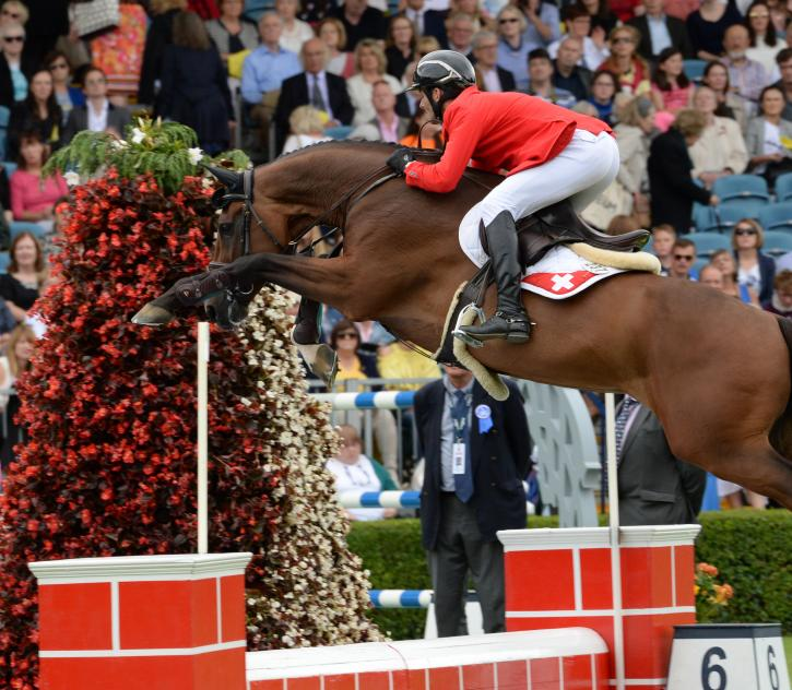 Werner Muff (SUI) riding Daimler (Photo: FEI/Tony Parkes)
