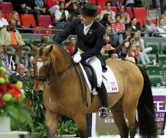 Jaimey and Lindor's Finest competing at the FEI World Cup in Gothenburg, Sweden in 2013.