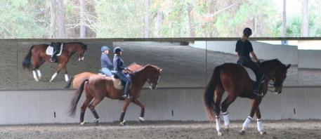 Anne Gribbons teaching in her covered arena at Knoll Dressage, near Orlando, Florida
