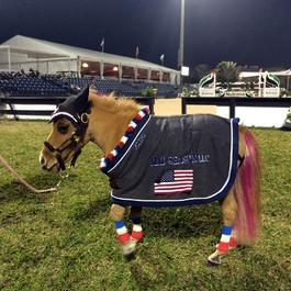 Peeps as the Nations Cup Mascot at WEF