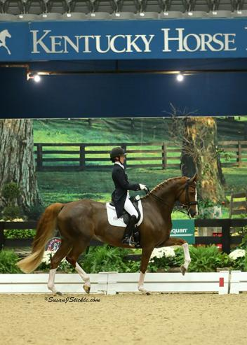 Alice Tarjan & Elfenfeuer on their way to winning the Grand Prix Adult Amateur Championship