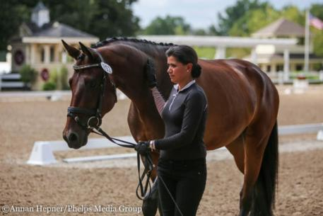 Anna Wood, Hotshot, Markel/USEF Young and Developing Horse Dressage National Championships, Lamplight Equestrian Center
