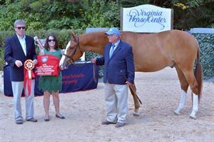 Arbor Hill with Richard Tylor, USEF's Natalie Norwood and Bill Rube (David Bell/RideOnSports.PhotoReflect.com)