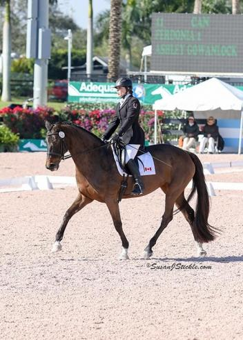 Ashley Gowanlock, Ferdonia 2, CPEDI, Para Dressage Team