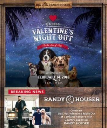Big Dog Rescue Valentine's Fundraiser