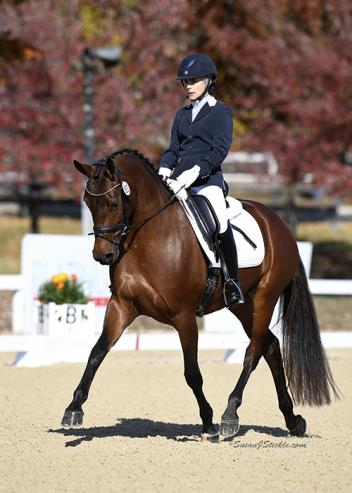 Bonnie Canter and Fifinella GCF of Texas proved that size doesn't matter in winning the Second Level Adult Amateur Championship at the 2016 US Dressage Finals presented by Adequan®