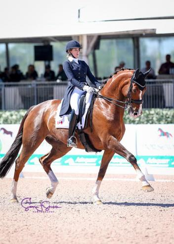 Brittany Fraser (CAN) chalks up her first ever win in the grand prix test on her own 13-year-old gelding All In, by the Jazz son Tango.