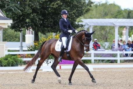 Carly Taylor-Smith, Rosalut NHF, 2015 Markel/USEF Young and Developing Horse Dressage Championships, Lamplight.