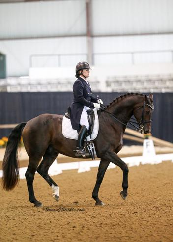 Christy Raisbeck and Herslev Mark's Mister B captured the GAIG Reserve Championship in the Intermediaire II