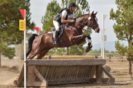 David Adamo and Rockstar are Four-year-old Young Event Horse Reserve Champions.