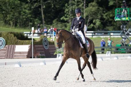 Dressage competiton begins Friday