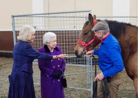 Her Majesty The Queen joins The Duchess as Her Royal Highness hosts a horsemanship demonstration by Brooke Ambassador Monty Roberts at the Royal Mews.