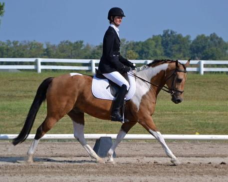 Ellen Murphy & Crunch N Munch trotted to victory at the National Dressage Pony Cup. (Photo: Jennifer M. Keeler)