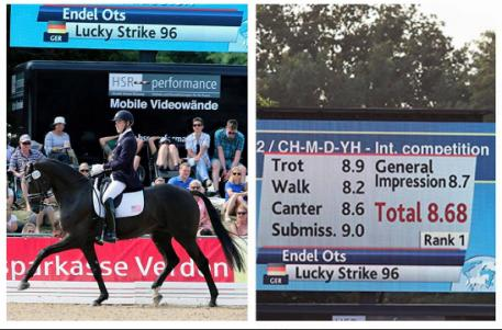 Endel Ots and Lucky Strike at FEI World Breeding Championships for Dressage Young Horses