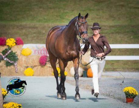 CCI2* Rider Erin Pullen and Tag, fair hill, 2016