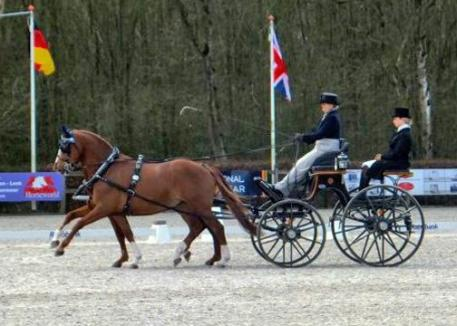 Kathi Dancer in Ermelo, NED competing Redfors and Joop van den Bruel in the dressage phase.