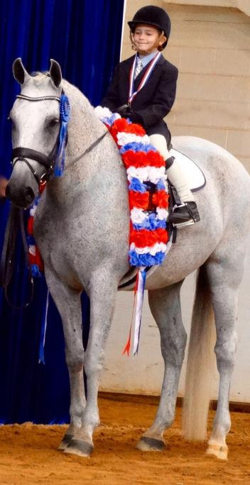 Ethan Yeager aboard Zerbino Interagro won the Exhibition Leadline Class Riders 8 Years Old and Under class at the 2015 IALHA National Championship Show