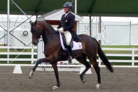 Fashion Designer Old Returns to the Markel/USEF National Developing Horse Championship for the third year.