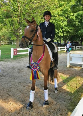 German Riding Pony gelding Golden Charmant won the four-year-old division of the NDPC Young Pony Futurity with Katie Foster. Photo courtesy of Katie Foster