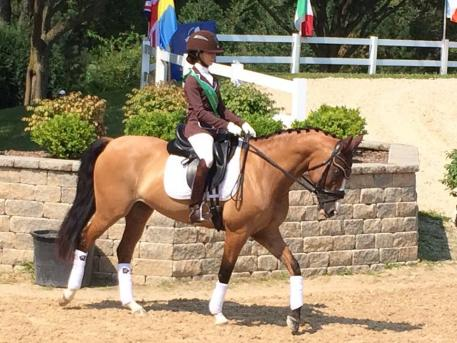Hannah Neimy sixth overall at the USEF Dressage Seat Medal Finals