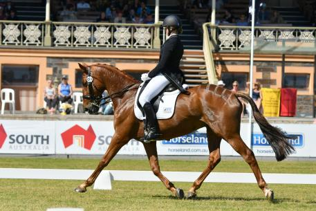 Hazel Shannon (AUS) riding Clifford