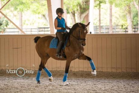 Janine Little schooling Demitra in Florida, where she actively trains and competes from December through April; this will be Little's eighth year wintering and training at the lovely Lady Jean Ranch. (Photo:Made By Jessy Photogaphy)