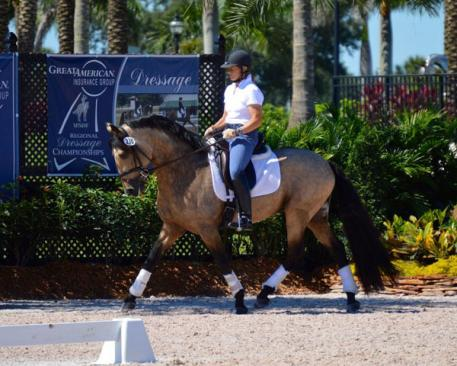 Jenny Knight of Florida is looking forward to earning year-end awards in the NDPC's new small horse division with her Lusitano stallion Eolo. (Photo: Bobby Murray)