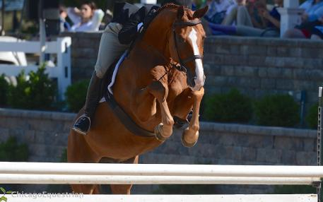 Jersey Boy and Jennifer Alfano took second place. (Photo: Chicago Equestrian)