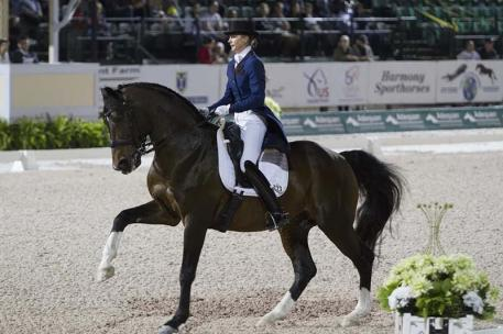 Katie Poag riding Zonnekoning under the lights at the Adequan Global Dressage Festival