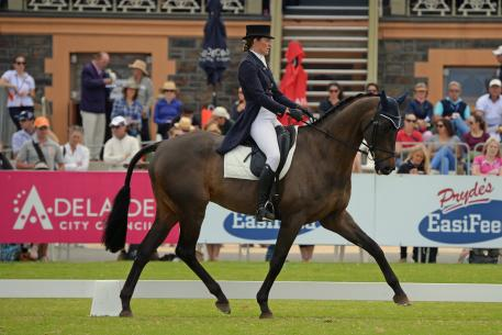 """Successful Victorian rider , breeder and trainer, Katja Weimann has been working on her dressage with her home bred, 'BP Flamboyant' and it has clearly worked. The Triathlete gelding produced one of his best tests, according to Katja, the """"best ever"""" to hold second place at the end of day one with 49.10."""