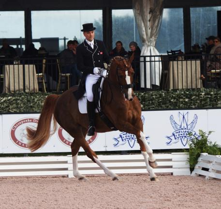Representing the 'boys club' at The Horse of Course, sponsored rider and now United States citizen, Lars Petersen at the Adequan Global Dressage Festival