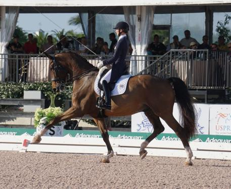 Laura Graves and Verdades riding to excellence during week five of the Adequan Global Dressage Festival.