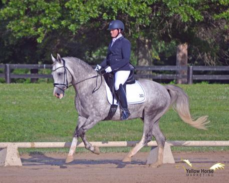 North American Sport Pony, Magnum, NDPC Five-Year-Old Born in the USA award, Futurity Reserve Championship, Kathryn Barry