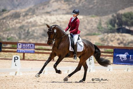 Kim McGrath on MSJ Celebrity won reserve in the FEI Young Horse finals 4-year-old division. (Photo: Terri Miller)