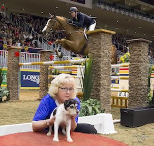 Mclain Ward topped Saturday's matinee competition by winning the 5,000 Canine-Equine Challenge, presented by the Toronto Star, riding his new mount, Carneyhaugh Manx.