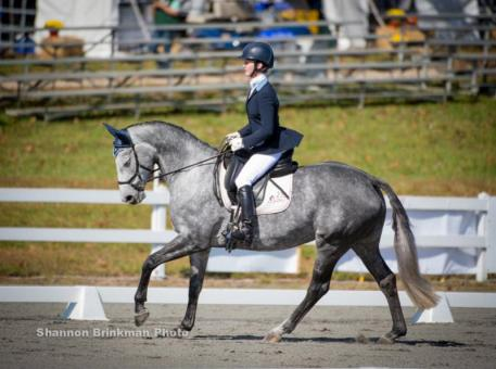 5--year-old Young Event Horse leader Metallica ridden by Kelli Temple