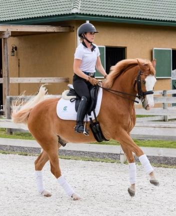 "Micah Deligdish and ""Vegas"" will travel all the way from south Florida to compete at Third Level and Freestyle at this year's Pony Cup in Illinois. (Photo: Deligdish)"