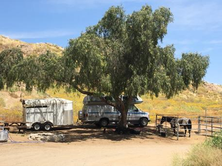 Horse camping with new endurance friends in Lake Perris, California.