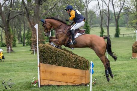 Phillip Dutton and Fernhill Fugitive are second in the Rolex Kentucky Three-Day Event, presented by Land Rover