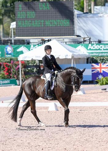 Rio Rio - Paralympic Dressage mount SOLD through HorsesDaily's HorseMarket - twice! List your horse now!