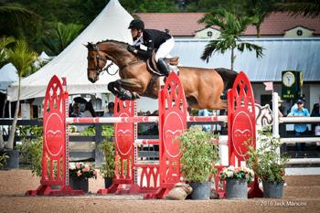 Rufus de Violaines, who scored two Classic victories with Emanuel Andrade, was named the Medium Amateur-Owner Circuit Champion at the 2016 Winter Equestrian Festival.