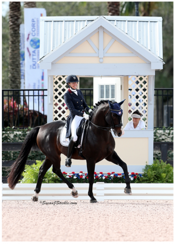 Charlotte Jorst and Kastel's Nintendo at the 2015 U.S.  Dressage Festival of Champions