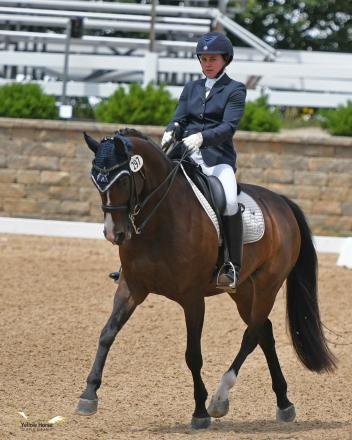 essie Hayes of New Jersey and Hanoverian mare Rivendell claimed the Third Level Open Championship for small horses. Photo by Jennifer M. Keeler.