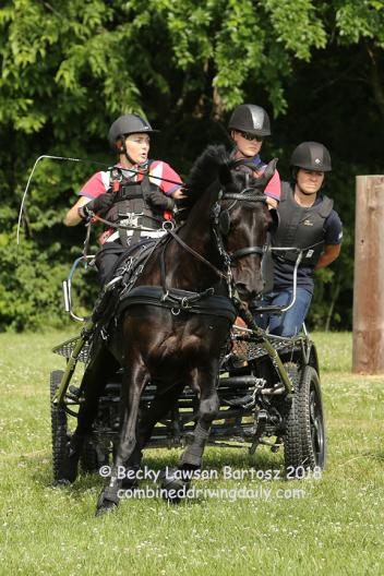"United States Equestrian Director of Driving, Danielle Aamodt on the navigator  back step for Para Driver Stefanie Putnam with ""Shadow"""