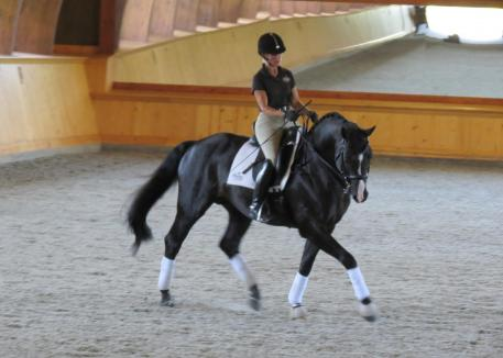 Susanne Hassler gave her input of posture in the saddle. Photo: Naomi Parry