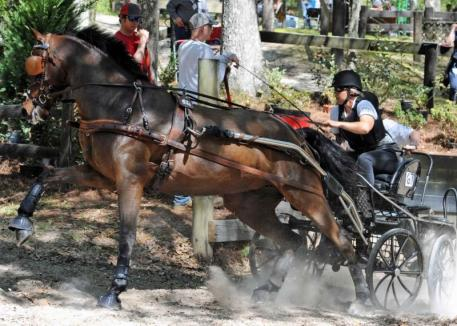 Suzy Stafford & PVF Peace of Mind on course during the demanding marathon at Live Oak International. (Photo: Pics of You)