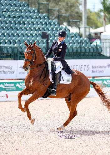Tina Konyot (USA) leads from the front on Diamantino II in the Intermediate I CDI1*.