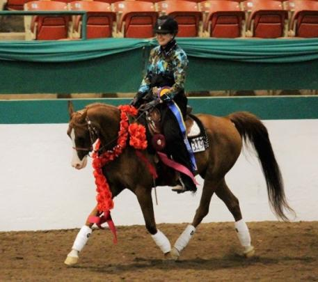 Triple Crown Excellence Award winners and National Champions Hillary Rapier and SB Heritage+ take their victory lap at the Arabian and Half Arabian Sport Horse Nationals